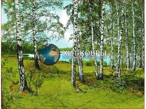 priroda 51068